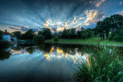 35/52 Doctors Pond Sun Stream