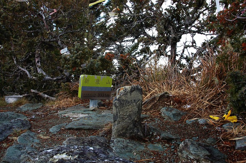新康山森林三角點(Elev. 3331 m)