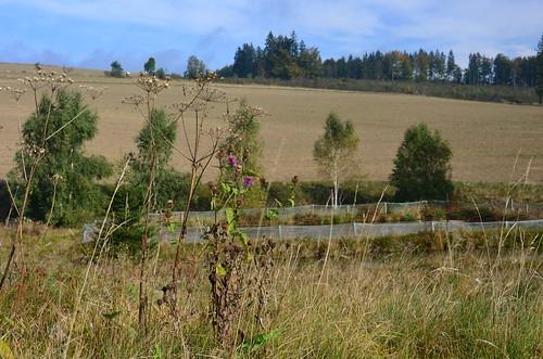 Von der Anhöhe gibt es einen Ausblick auf ein abgeerntetes Feld