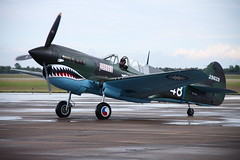 monoplane, aviation, airplane, propeller driven aircraft, vehicle, fighter aircraft, curtiss p-40 warhawk, air show,