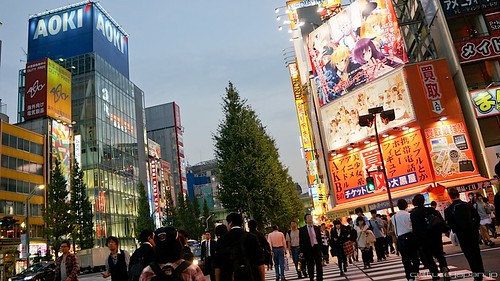Akihabara Shops 12