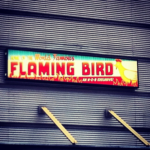 This made me chuckle. So... What does a Flaming Bird say? by seanclaes