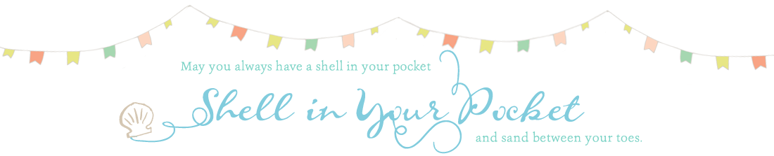 shells in your pocket header