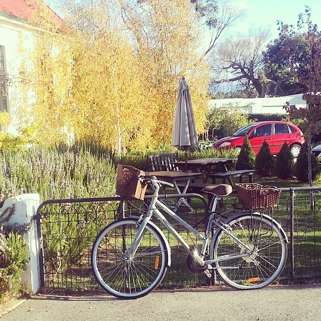 #bikesoflaunceston (not quite Launceston, but close enough) - a vintage style Trek out the front of a cafe in Perth #cutebike