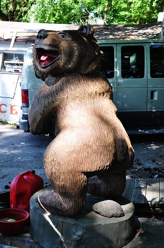 Does a Bear Crap in a Parking Lot?