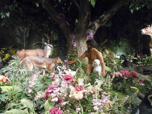 Creation Museum (14)