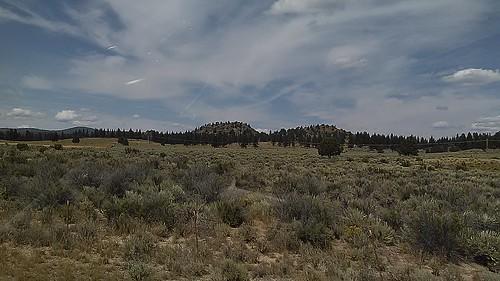travel summer oregon landscape juniper