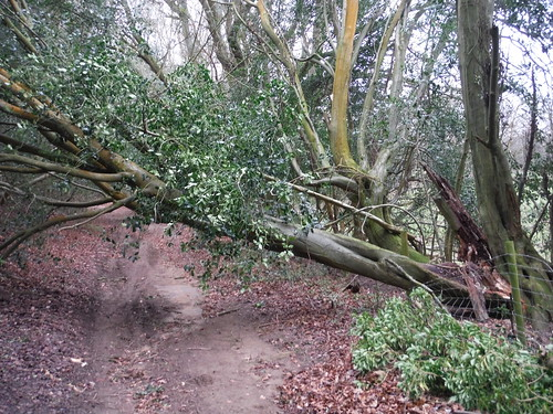 Storm 'Doris' has gone through