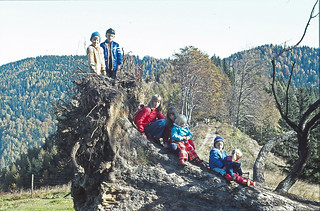 1975 ca. 26.10., Kinder auf Bergahorn