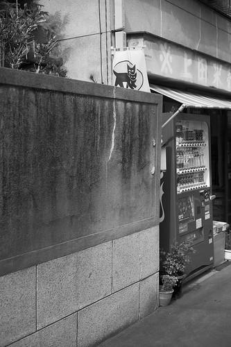JE C4 15 054 東京都墨田区東向島 M9P ST50 2.5#