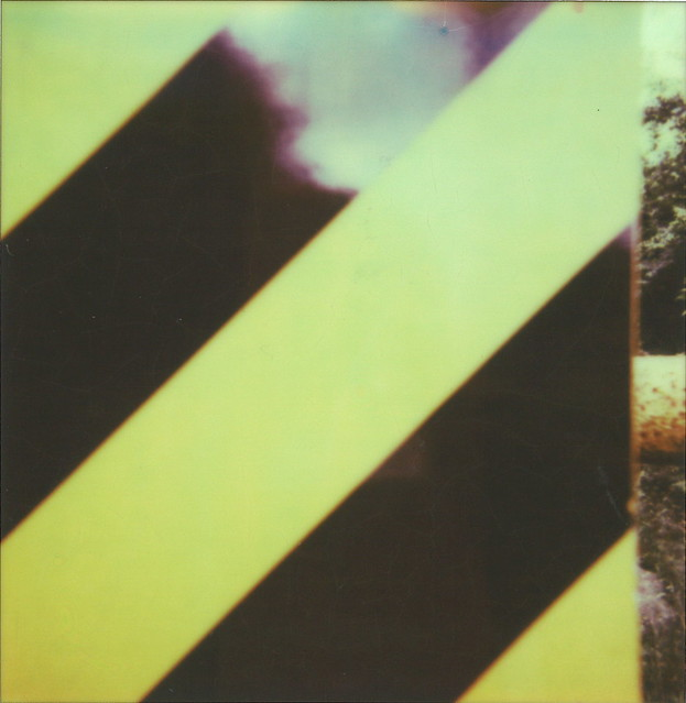 Polaroid_49