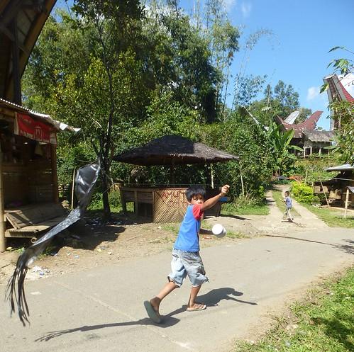 Sulawesi13-Lo'ko Mata-Tikala (15)