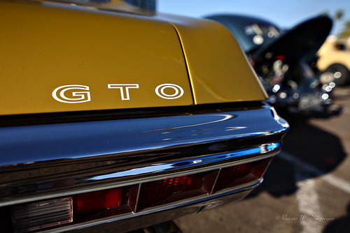 Beautiful Metallic Gold GTO