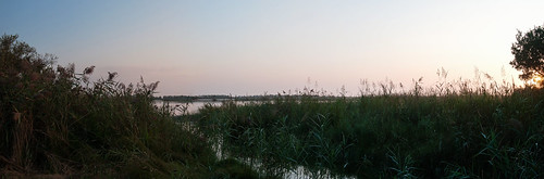 sunrise dawn unitedstates panoramic marsh delaware dover delawarebay tedharveywildlifemanagementarea