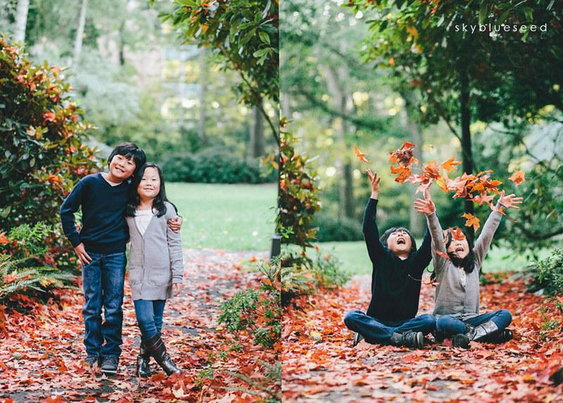 Sibling leaves