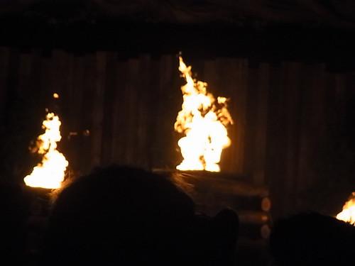 SEKAI NO OWARI 炎と森のカーニバル