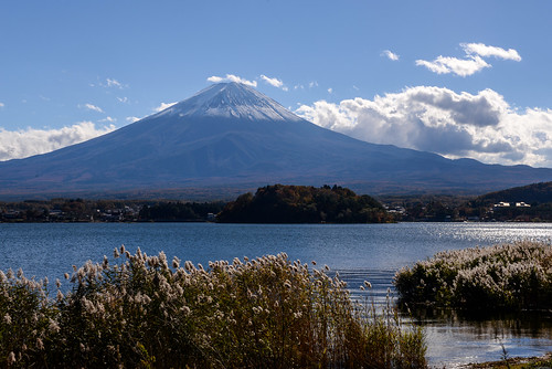 november autumn japan fuji getty 日本 crazyshin yamanashi 河口湖 富士 山梨県 2013 南都留郡 afsnikkor2470mmf28ged order500 nikond610 20131113d012692 10837654344