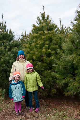 Christmas tree selection