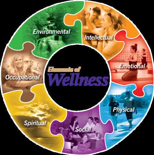 Wellness_Wheel.png