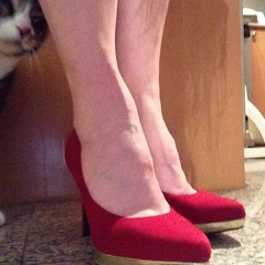 Red shoes and a kitty