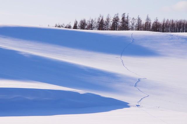 丘陵の影2