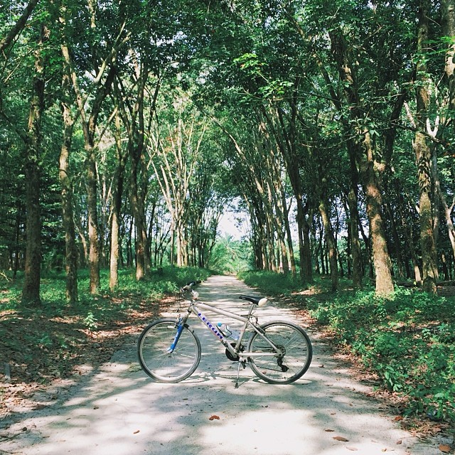 Total 8km ride / K1 / #vscocam