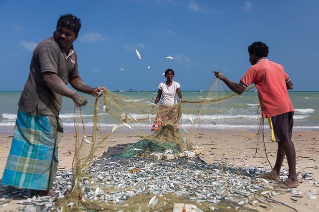 Fishermen, Mannar island