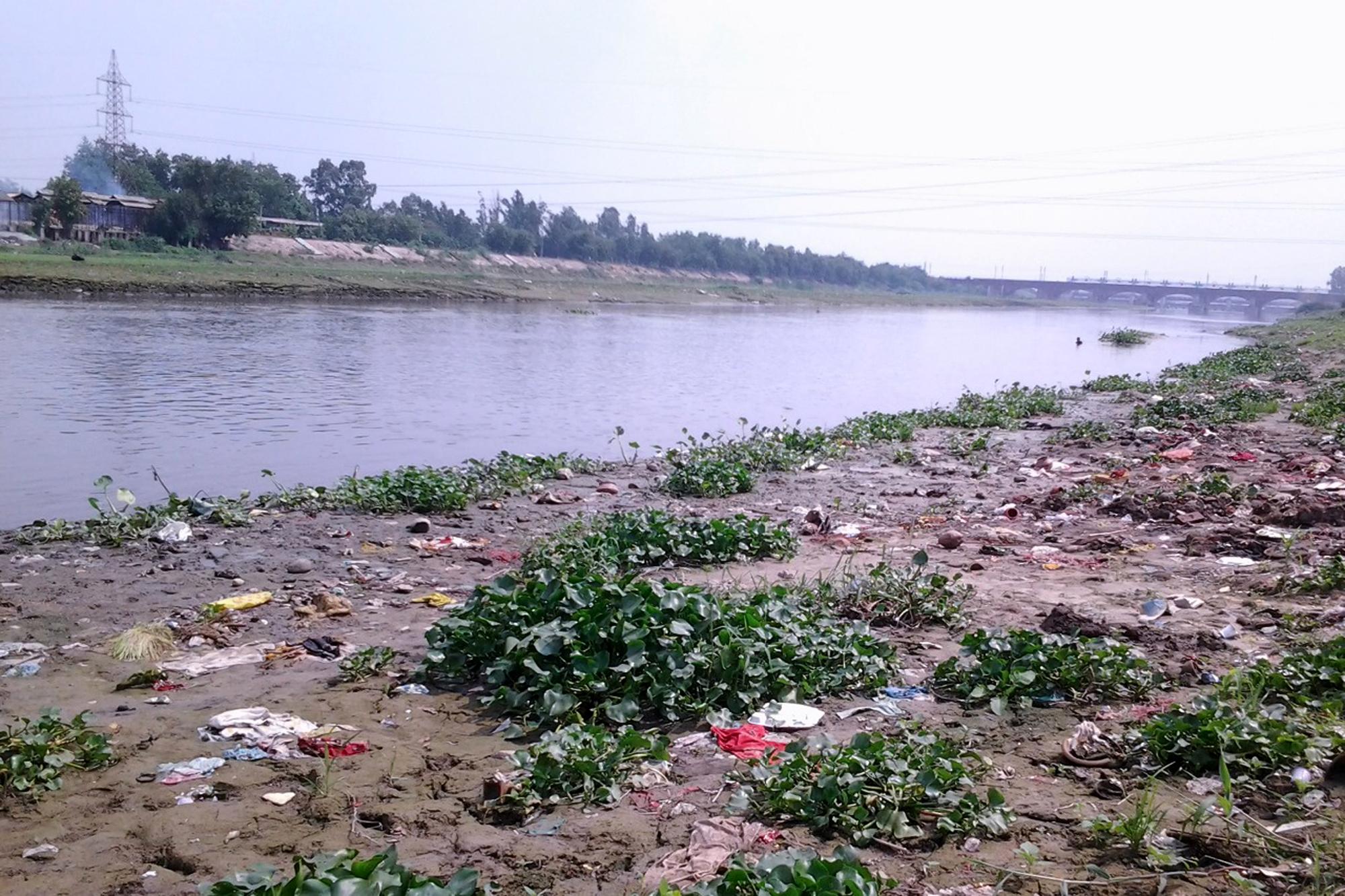 प्रदूषित हिंडन नदी