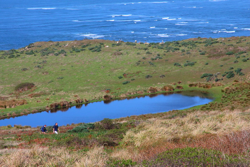 IMG_2901 Tomales Point Trail