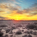 Sunrise in the Mojave Desert by steveberardi