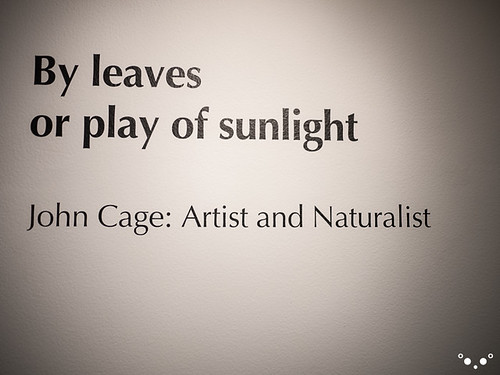 By leaves or play of light | John Cage: Artist and Naturalist