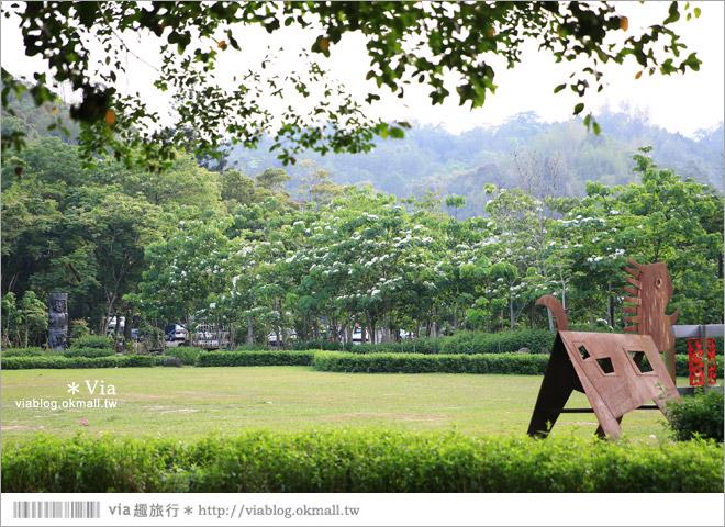 【桐花2014】南投油桐花景點~牛耳石雕藝術渡假村賞桐趣8