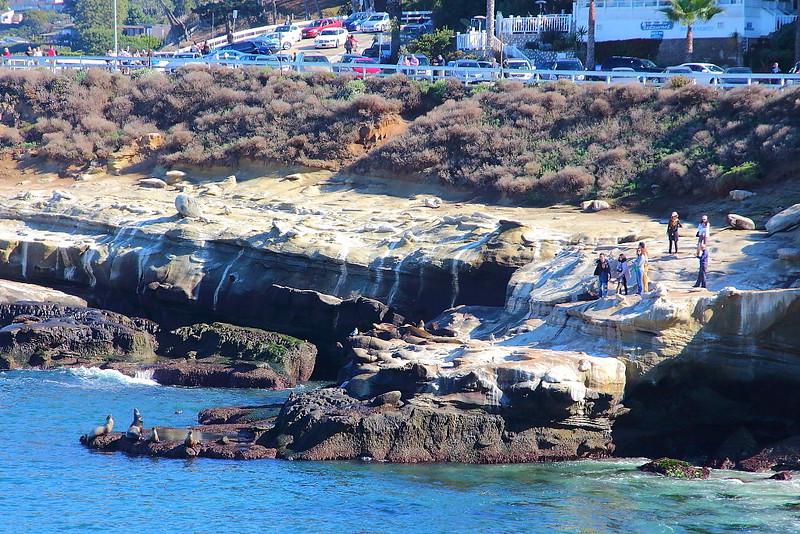 IMG_2144 La Jolla Cove