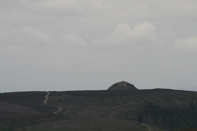 Roseberry Topping (zoom) from Gisborough Moor trig point
