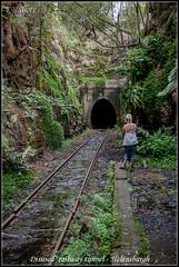 Disused  railway tunnel - Helensburgh