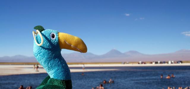 Deserto do Atacama 2