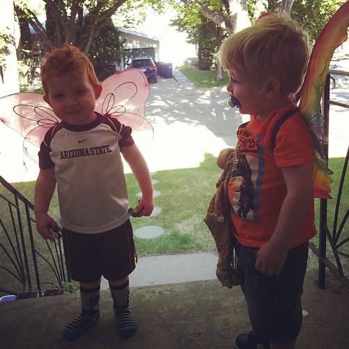 butterfly boys