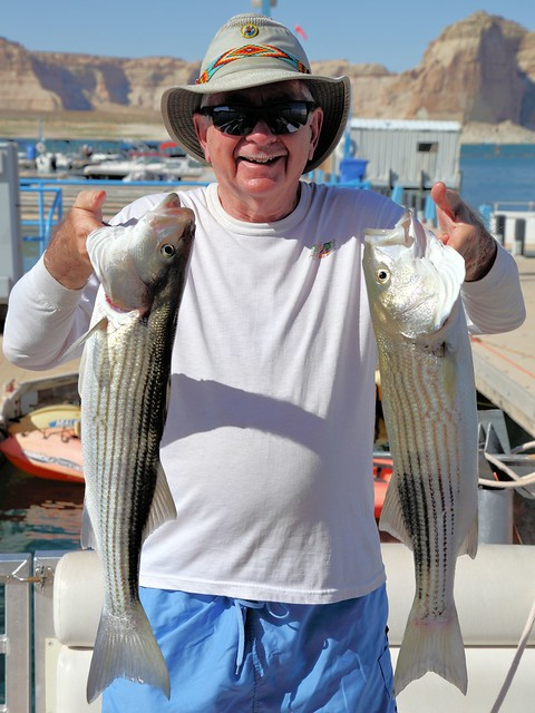 Ken's two striped bass 20130622