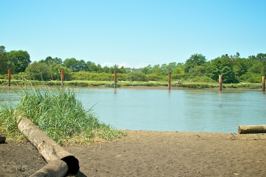 Fraser River Waterfront Parks