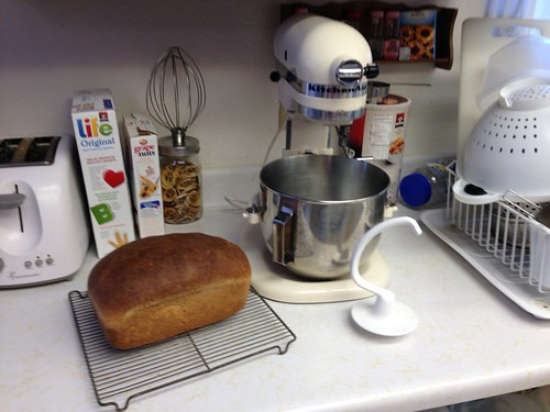 Yep, it makes bread.