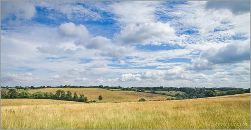 summer england landscape photo walk august hertfordshire 2013 pottenend nettleden steviepix