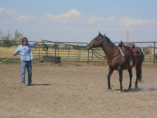 Horse Lessons- Mama- 30Aug13 (17)