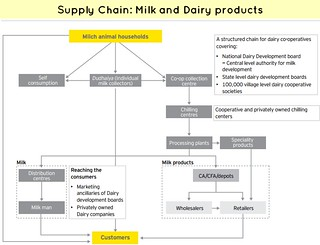 Supply Chain Milk and Dairy products