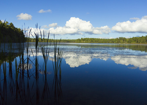 sky lake clouds forest pond skies state massachusetts myles standish