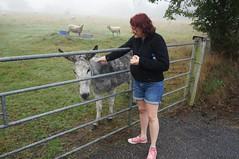 Emma's new friend - Photo of Airel