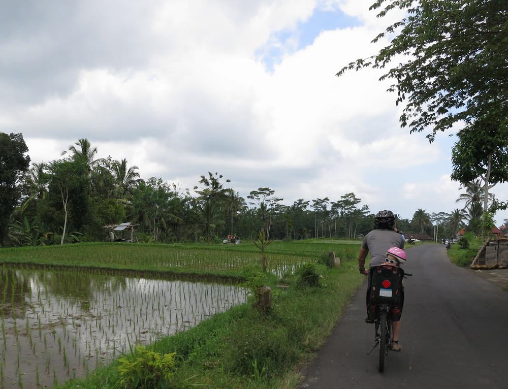 Bali020