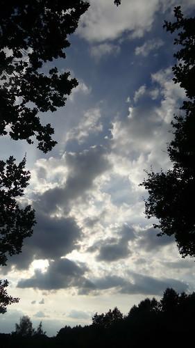 Zwischen Erde und Himmel bei Sonnenuntergang 00142