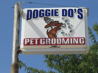 Doggie Do's
