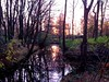 Sunrise in early winter (Netherlands 2013) by paularps