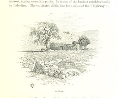 """British Library digitised image from page 271 of """"In Scripture Lands. New views of sacred places ... with ... illustrations, etc"""""""